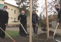 Teremtésvédelmi hét és faültetés a Széchenyiben